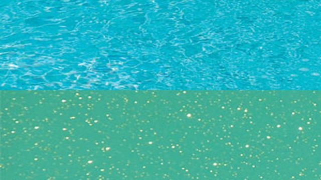 Persian Diamond Series | Paradise Pools